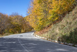 The road between the trees with yellow autumn trees. Greece
