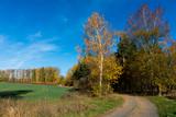 Herbstwanderweg - 232048727