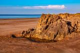 Wild Beach - 232051515