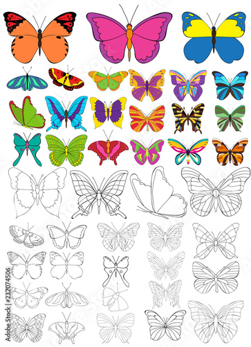 vector, isolated, set of beautiful butterflies coloring book - 232074506