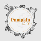 Set with outline hand drawn traditional pumpkin spices. Hand drawn cinnamon, allspice, ginger, clove, nutmeg. - 232086583