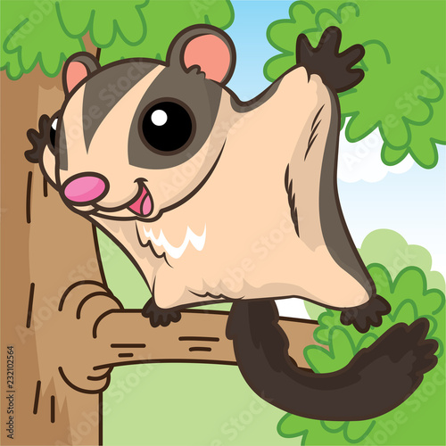 Australia sugar glider cartoon, cartoon cute, animal cute - 232102564