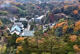 Japan autumn - Kamakura