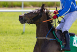 Close-up on jockey and race horse on the track - 232127139