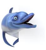 Fun Dolphin - 3D Illustration - 232128952