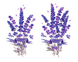 Gouache small bouquets of lavender with banner. In lilac colors.