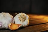 Garlic on a dark background - 232151113