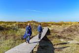 Weg zum kleinen Leuchtturm auf der Insel Amrum - 232157911