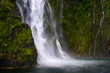 Waterfall - 232217796