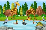 Many animal next to river - 232218330