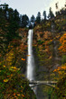 Multnomah Falls in Autumn - 232223900