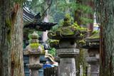 traditional kasuga lanters at japanese temple entrance - 232238153