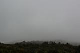Туман - 232289329