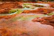 Leinwanddruck Bild - Salto del Agrio and Agrio river