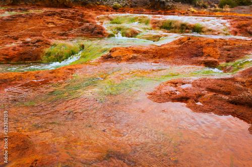 Leinwanddruck Bild Salto del Agrio and Agrio river
