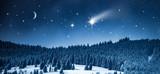 Sternenhimmel über Winterwald
