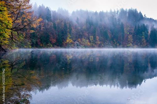 Mgła przy Freibergsee, Allgäu Alps, OberallgÃuu, Bavaria, Niemcy