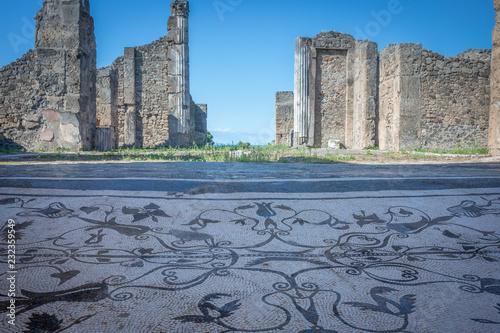 A roman mosaic and ruins above