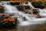 Scalber Force in Autumn