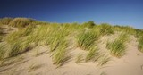 Summer shot of large beach dunes covered with grass on a sunny day. Clear blue sky. - 232386185
