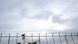 Restricted area fence and Passenger airplane landing - 232386346