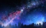 Night forest scene - 232387771