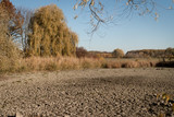 Dead Lake After Hot Summer - 232398164