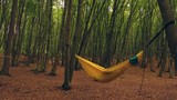 Girl reading a book while swinging in a hammock in the woods - 232420771