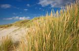 dune - 232455592