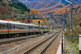 The train is moving in the Japanese province of Nagano in the season of autumn travel. - 232484901