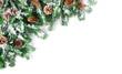Leinwanddruck Bild - Tannenzweige mit Schnee