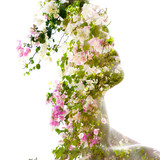 Double exposure of a young statuesque man's portrait blended with pink and white flowers of a tree - 232502163