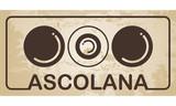 Ascolana - italian stuffed olive