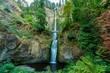 Multnomah Falls - Horizontal - 232508557