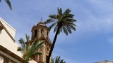 The Spanish City of Cadiz. Camera shot = Static wide shot of a building and tree by the Cadiz Cathedral. - 232533753