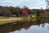 Colorful Trees around a Lake - 232535739