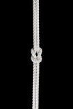 White ship ropes connected by reef knot isolated - 232537383
