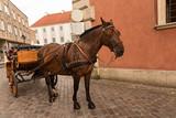Coche de caballos. - 232541187