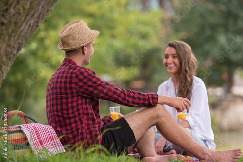 Leinwanddruck Bild Couple in love enjoying picnic time