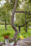 in the garden, a broom suspended against a tree - 232632926