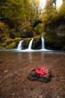 Autumn waterfall - 232633703