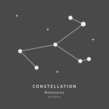The Constellation Of Monoceros. The Unicorn - linear icon. Vector illustration of the concept of astronomy.