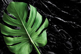 beautiful texture of black marble stone with monstera leaf.For decorative presentation - 232677780