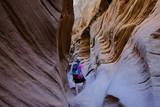 Utah Desert - 232693937