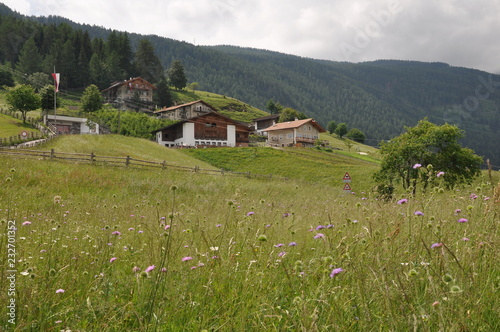 Aschbach in Südtirol © Buesi