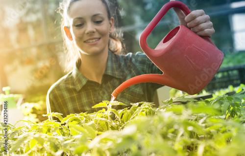 Leinwanddruck Bild Woman watering seedlings in greenhouse