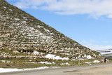 flock of sheep grazing on a mountain. Mongolia. Shepherd drives the flock home - 232736740