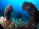 Scuba Diving in Malta and Gozo