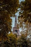 Views of eiffel tower - 232767743