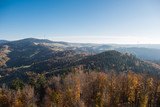 Black forest germany at autumn, vier from lookout tower Hohe Moehr - 232769337